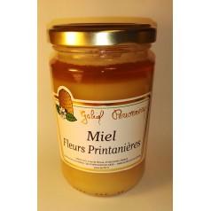 Miel de Fleurs Printanières - G.Perronneau 375g